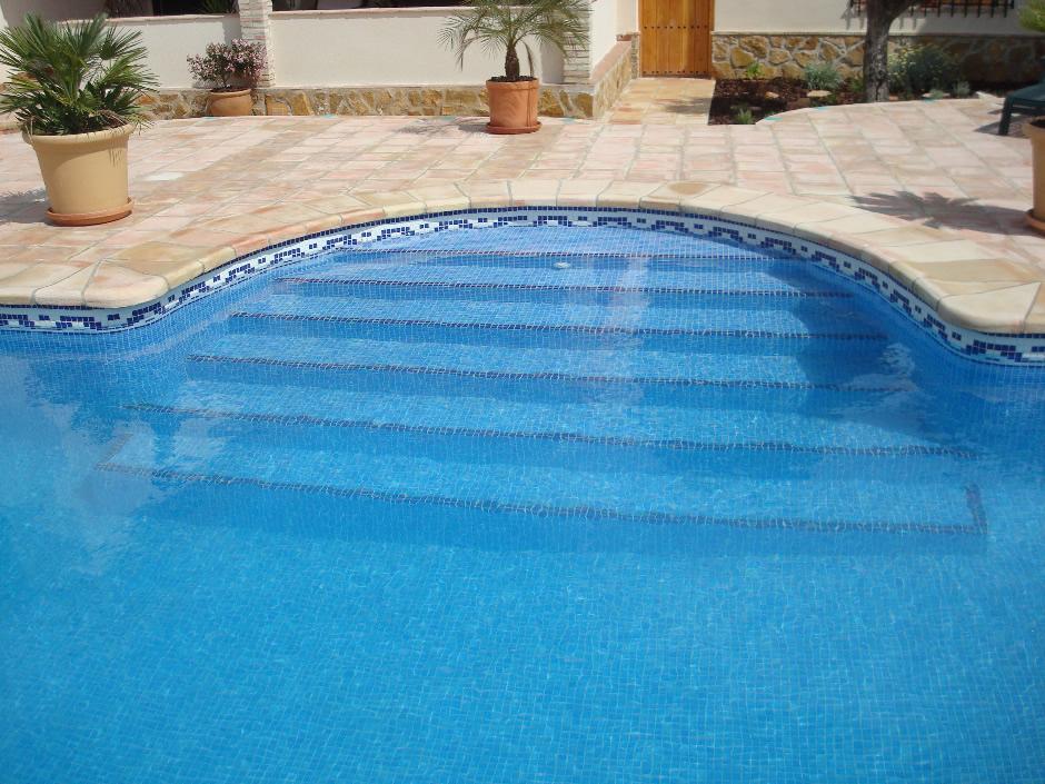 Coronacion de piscinas ceramica blas aleman ladrillo for Coronacion de piscinas precios